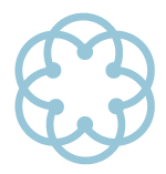 light blue SYMMETRY icon