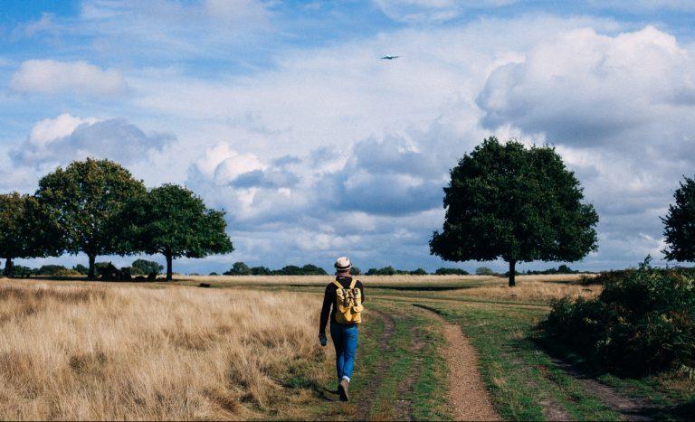 nature walk for neurofeedback